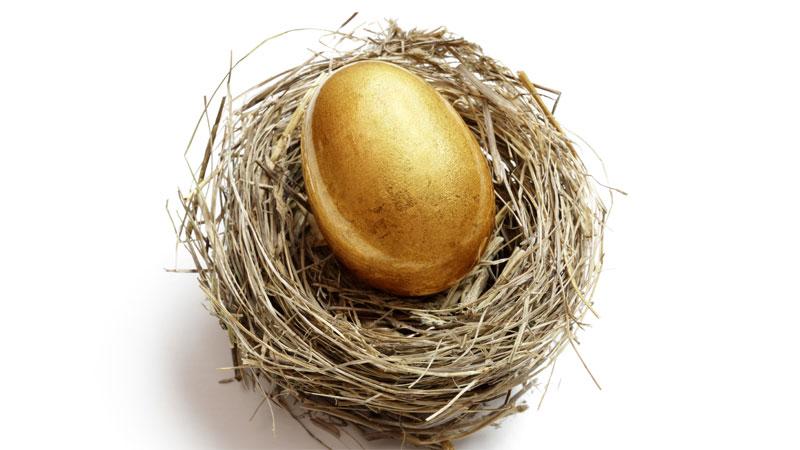 golden-nest-egg